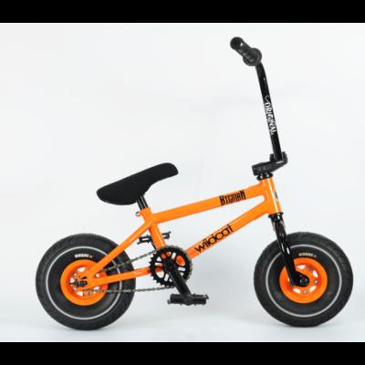 Wildcat Sand Storm Orange Rocker